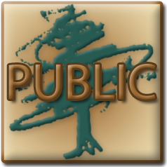 Launch Public GIS Mapping Website